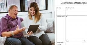 lean-mentoring-program